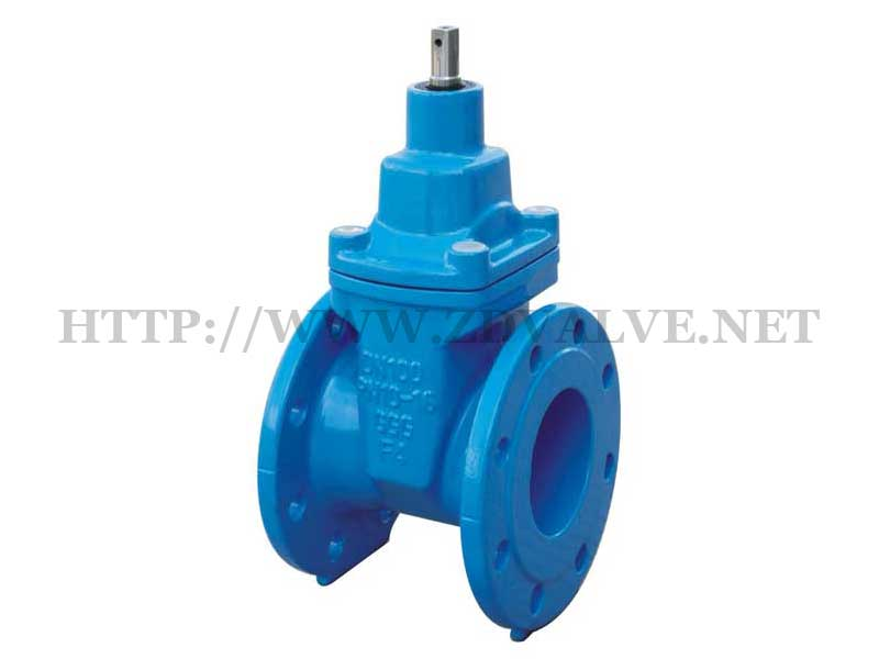Rubber seated gate valve